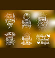 thanksgiving lettering with sketches vector image vector image