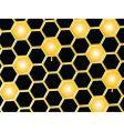 honey comb background vector image