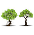collection of tree vector image vector image