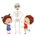 kids having biology lesson with human skeleton mod vector image vector image