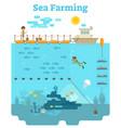 sea farming vector image vector image