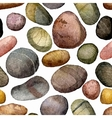 seamless pattern with sea stones drawing in vector image