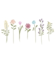 Set of flowers sketch for your design vector image vector image