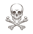 Skull and Bones vector image