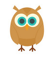 young owl in flat style vector image vector image