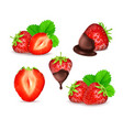 strawberry set vector image