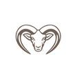 armenian mouflon head mascot vector image vector image