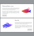 betta fish and flasher set vector image vector image