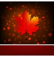 Card with autumn maple leaf template EPS 8 vector image