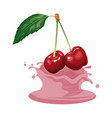 cherries and cream vector image vector image