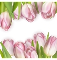 Colorful tulip blooms card EPS 10 vector image vector image