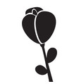 cute rose icon vector image vector image