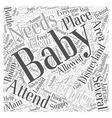 disneyland baby center Word Cloud Concept vector image vector image