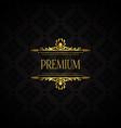 elegant luxury brand background vector image vector image