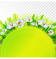 green nature background with chamomile vector image