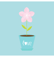 Sakura flower pot Japan blooming cherry blossom vector image vector image