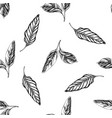 seamless pattern with black and white calathea vector image vector image