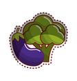 sticker broccoli and eggplant vegetable icon vector image vector image