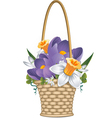 basket flowers vector image vector image