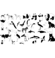 Black and white animals vector | Price: 1 Credit (USD $1)