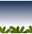 Christmas snowy background with fir branches vector image