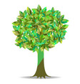 colorful of tree vector image