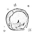 fox with the moon and stars in vinatge style vector image vector image