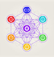 geometric metatron with chakras vector image vector image
