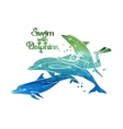 Graphic scuba diver riding the dolphin vector image vector image