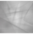 Gray Line Background vector image vector image