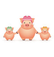 pigs in caps on white background chinese new year vector image vector image