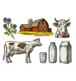 set milk farm cow head clover box carton vector image vector image