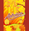 vertical bright yellow poster gold autumn vector image