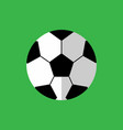 simple flat style football sport graphic vector image