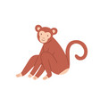 cute brown baby monkey sitting and smiling vector image vector image