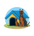 cute dogs design vector image vector image