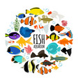 flat aquarium fishes round concept vector image