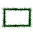 frame of colorful coniferous branches vector image vector image