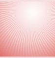 swirl background from rotated rays vector image vector image