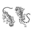 asian tigers in vintage japanese style for logo vector image vector image
