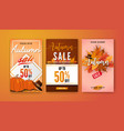 autumn sale vertical banner background template vector image vector image