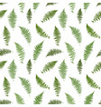 fern leaf background vector image