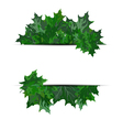 Summer maple leaves vector | Price: 1 Credit (USD $1)