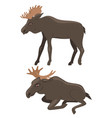 two moose isolated on a white background vector image vector image