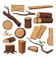 wooden log chopped trunk timber and tree branch vector image