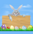 wooden sign easter eggs and bunny vector image vector image