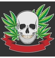 skull and Cannabis vector image