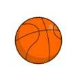 basketball ball isolated balls for games on white vector image