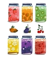 Bright Canned Sweet Fruit Jam Collection vector image