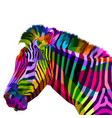 colorful zebra head on pop art style vector image vector image